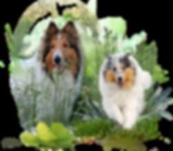 Zauberwald-Hunde-deko6a.png