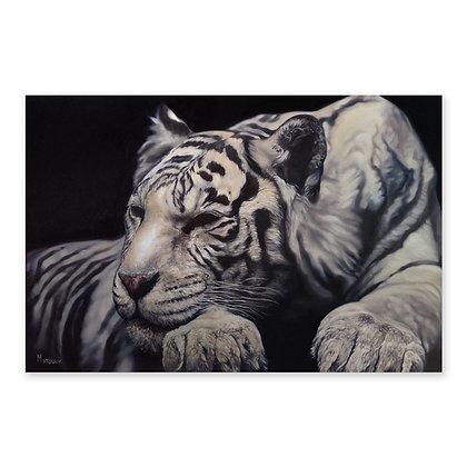 """White Tiger"""