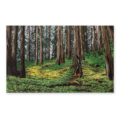 """""""Forest Path"""""""
