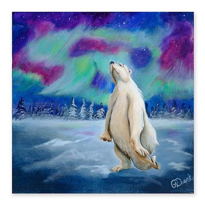 """""""Polar Shimmy"""""""