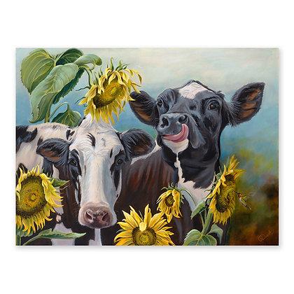 """""""Cowichan Sunshine Girls"""""""