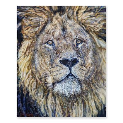 """""""Lion"""""""