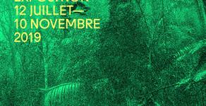 Expo fondation Cartier : NOUS LES ARBRES