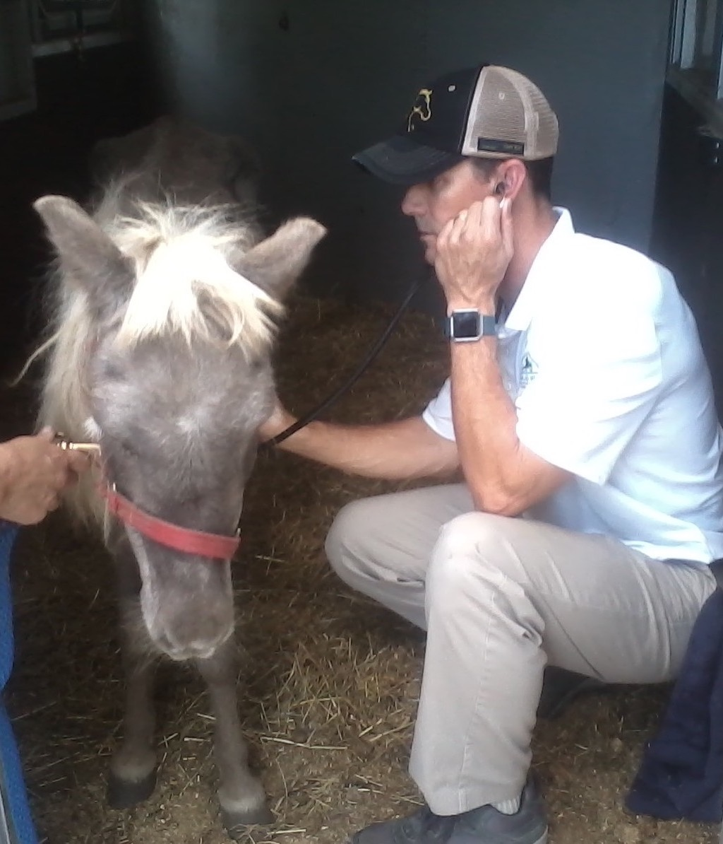 OHIO SPCA EQUINE RESCUE PROGRAM