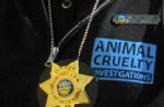 Goat Rescue Ohio SPCA