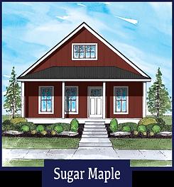 SugarMaple.png