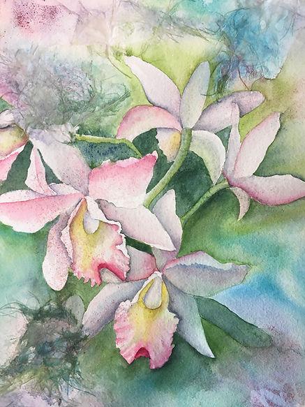 Botanical Beauty.jpg