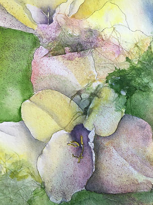 Gladiolus, Spring Surprise.jpg