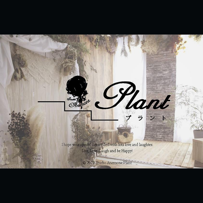 Plant(プラント)ネット予約