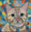 custom cat pet portrait