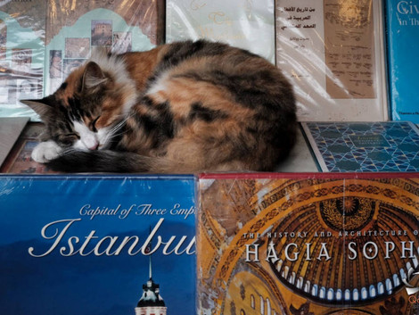 Istanbul (not Constantinople) pt. 1 of many
