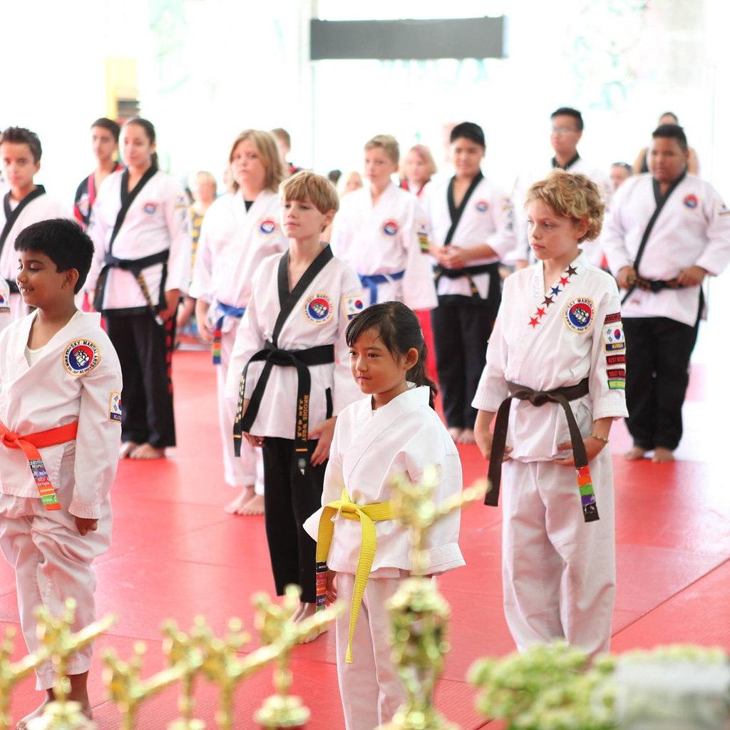 Sky Martial Arts Simi Valley Taekwondo Hapkido Self-defense