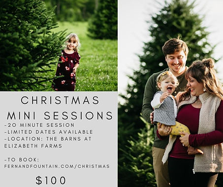 Christmas mini sessions (1).jpg
