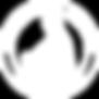 logo AAPOS.png