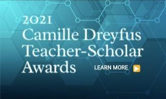 Camille Dreyfus Teacher-Scholar Awards