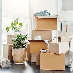 moving clean.jpg