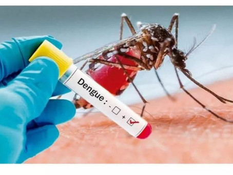 Dengue: cuide mais ainda da sua casa, pois a saúde pública não suporta duas epidemias