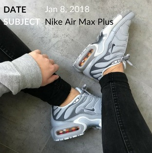 Nike Air Max Plus Wolf Grey Crep Check 1