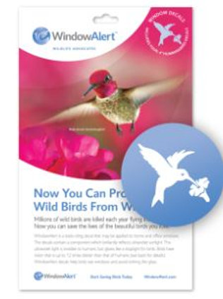 WindowAlert Hummingbird Decal