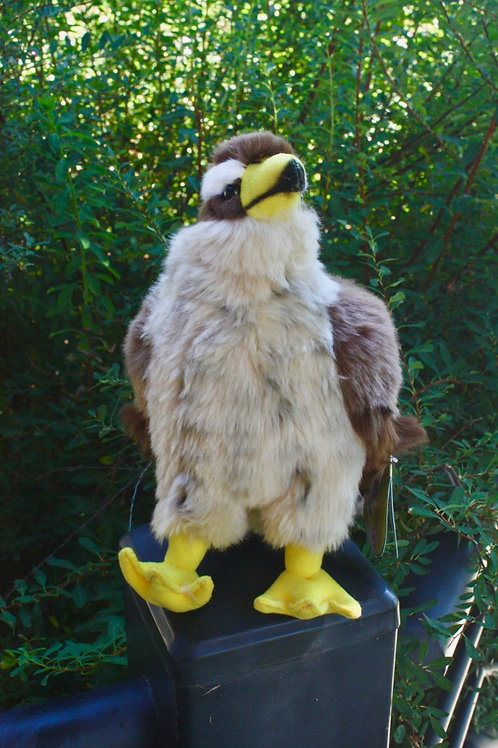 Peregrin Falcon Stuffed Toy