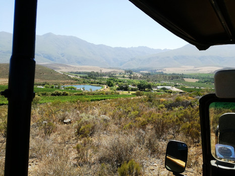 A mountain drive in the Overberg!