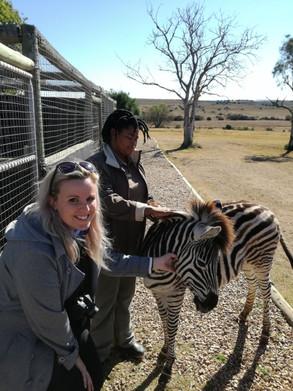 A visit to the Shamwari Wildlife Rehabilitation Centre!