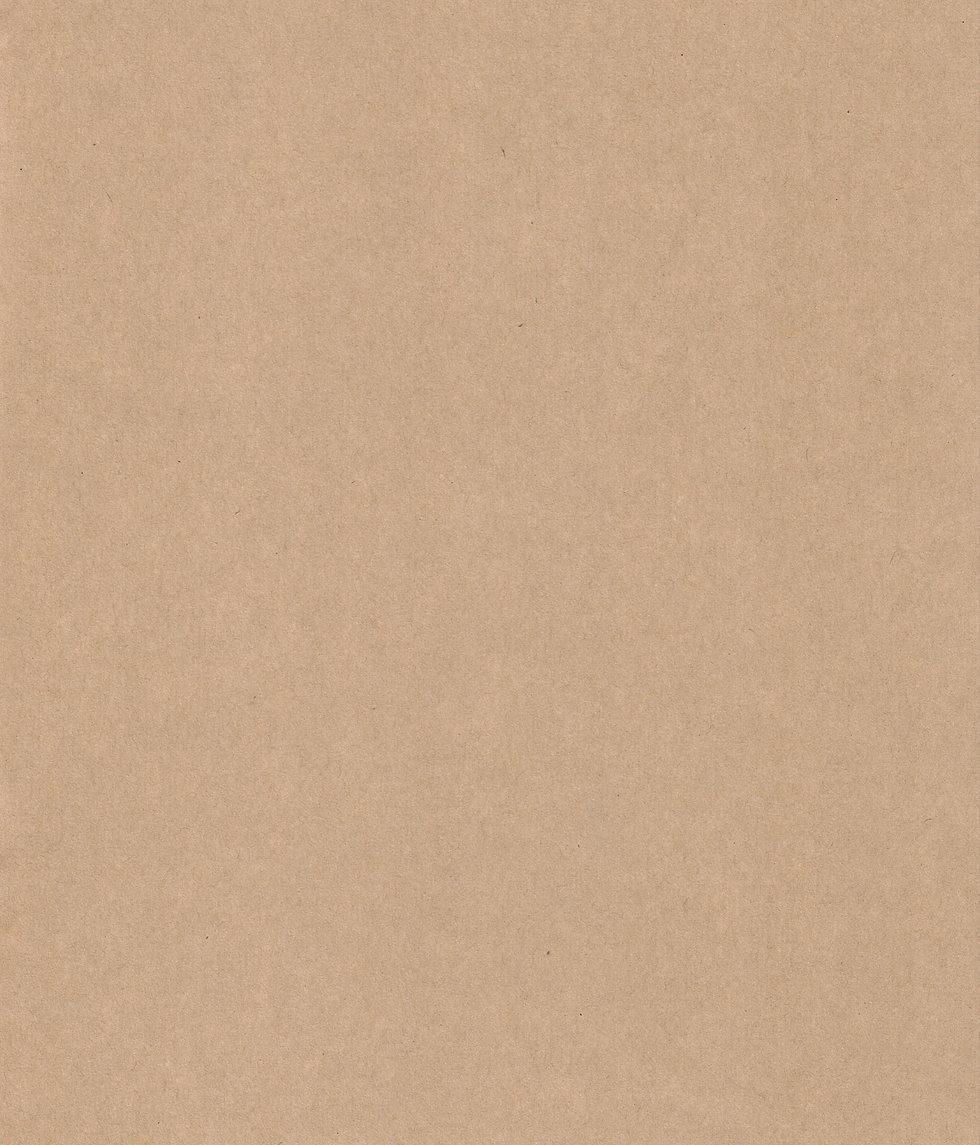 paper roll paper scan01.jpeg