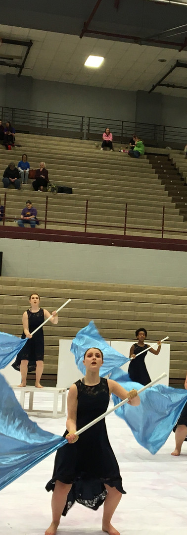 Winter Guard 2020(4).JPG