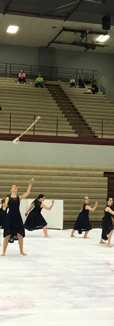 Winter guard 2020(10).JPG