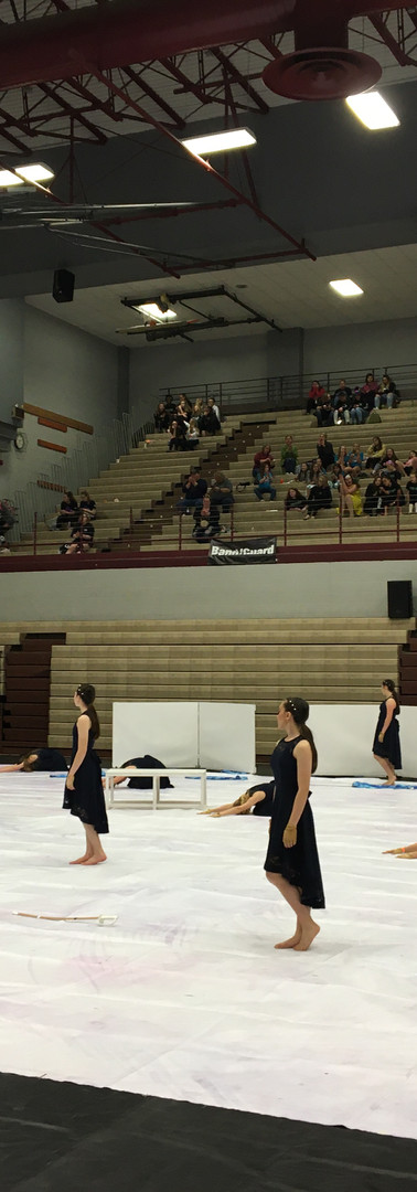Winter Guard 2020(7).JPG