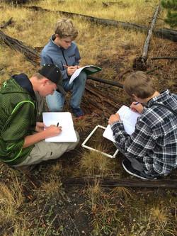 EMERGE Yellowstone Field Study