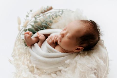 Newborn Brisbane