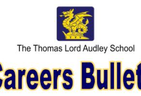 Careers Bulletin - July 2021