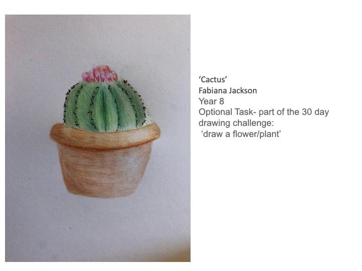 27/04/20 - Cactus
