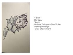 27/04/20 - Flower