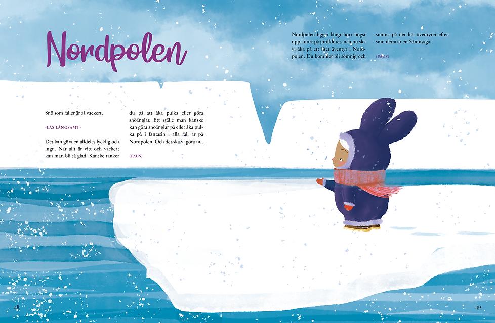 Nordpolen.png