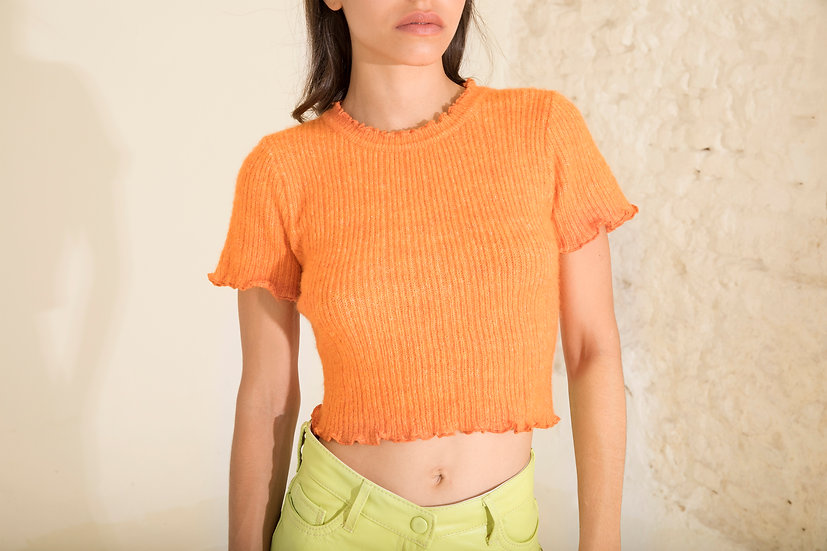 Pegasus Knit Top