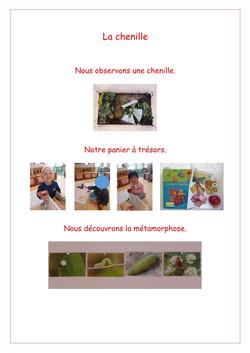 La chenille-page1