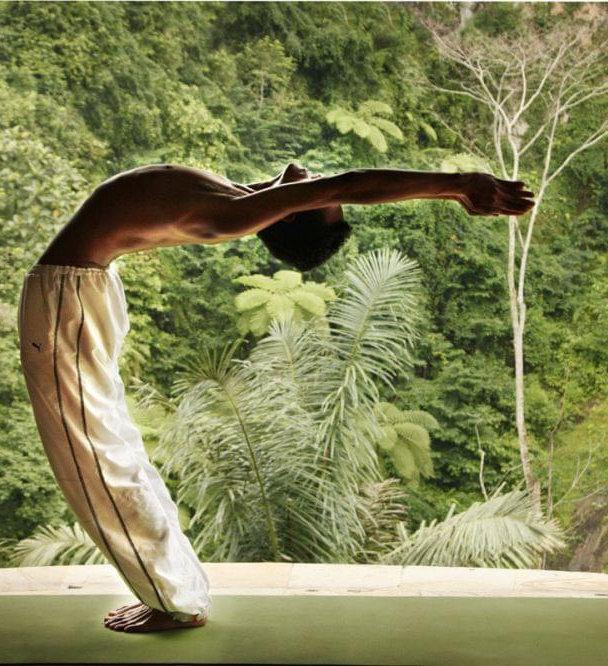 NJS Wellness | Nicole Jane Shaw| Dallas TX | Yoga
