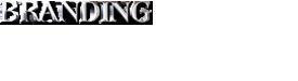 Branding 275X75.png