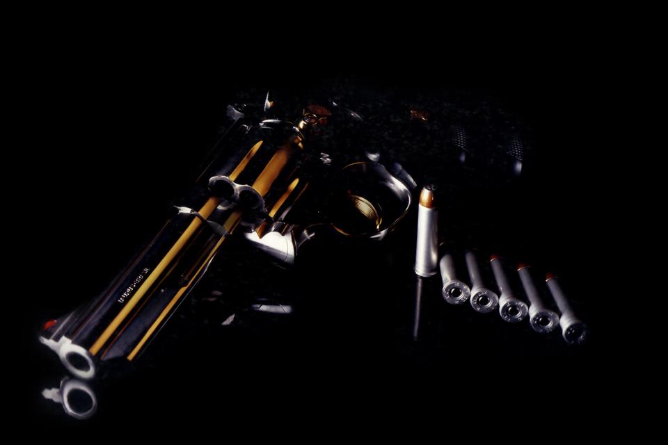 Colt 357 Phython