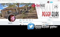 TWITTER MASTER 701X501 Peggy Elias