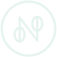 NTV_logo-emblem-baby-mint.png
