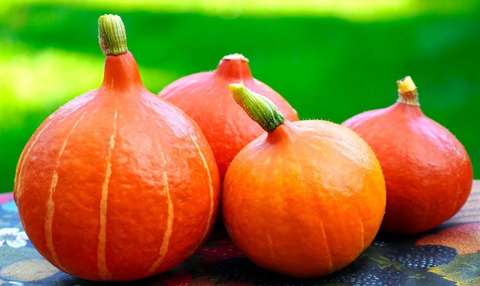 pumpkin-5572931_960_720.jpg
