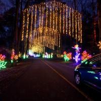 Atlanta Christmas Light's Limo Tours 2018