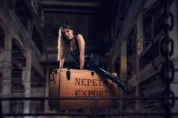NEPETA EXPORT