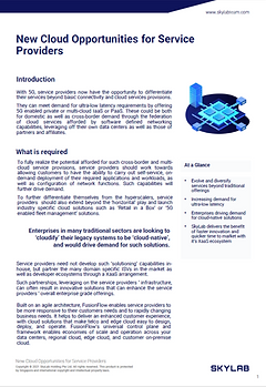 Whitepaper 1.png
