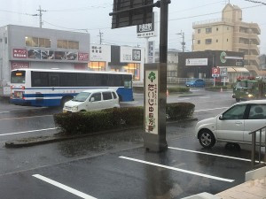 ☆雨が降っています☆