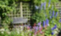 Restful image of garden
