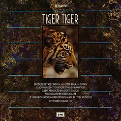 Duran Duran TIGER TIGER (IAN LITTLE REMIX) - b-side